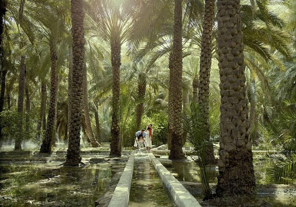Al Ain - Die Oasenstadt Abu Dhabis
