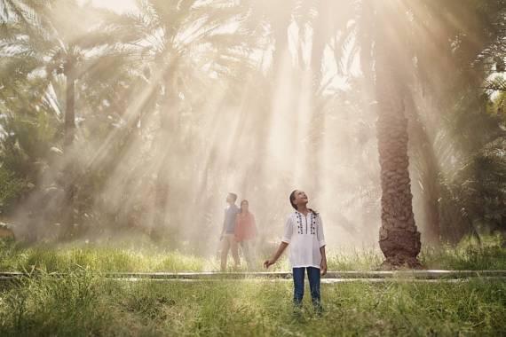 Al Ain – Die Oasenstadt im Emirat Abu Dhabi