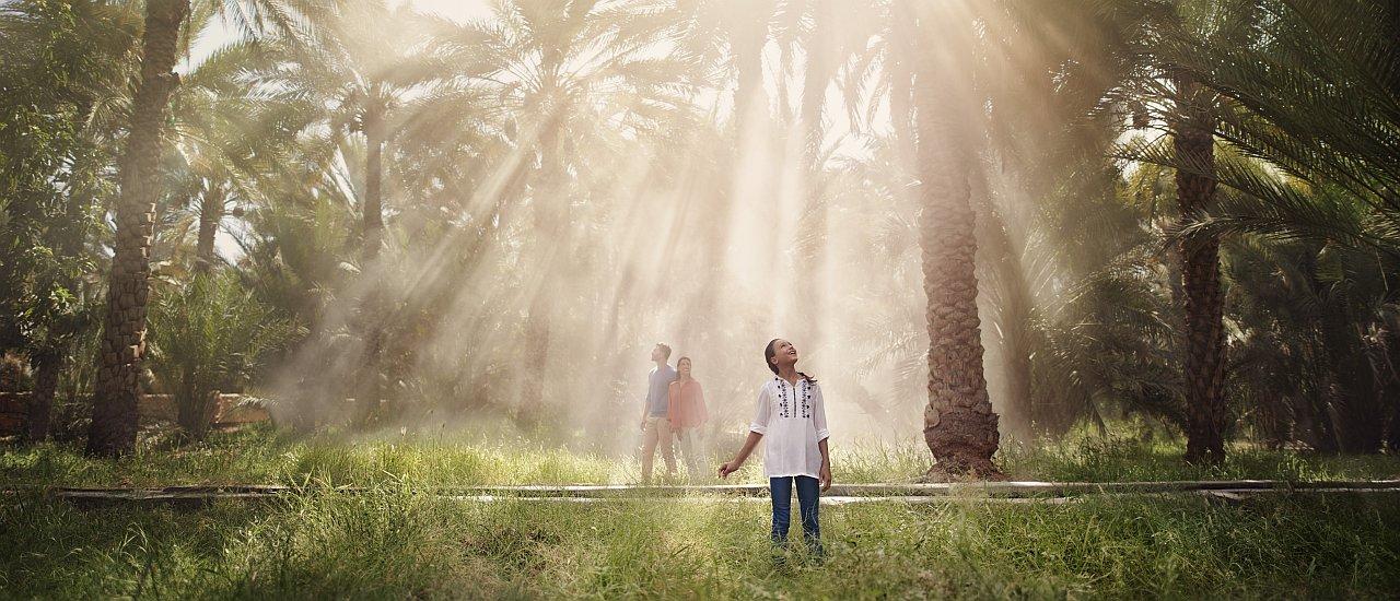 Abu Dhabi AL Ain
