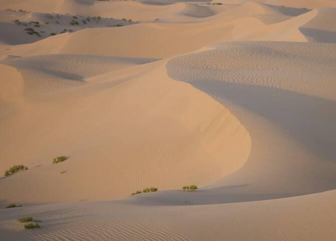 Al Wathba Dünen