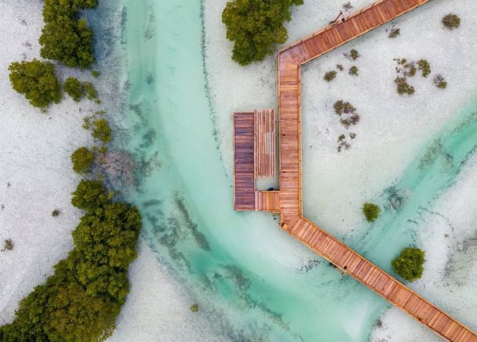Nationalpark Mangroven Abu Dhabi